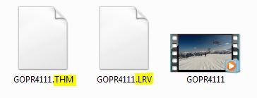 GoPro .THM und .LRV Dateien